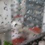 la pioggia a Baires