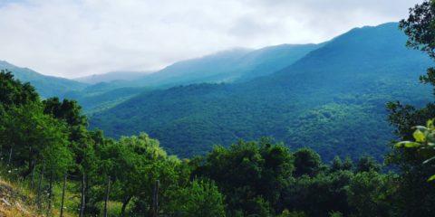 Amazzonia Sicula